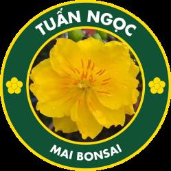 Vườn Mai Bonsai Tuấn Ngọc